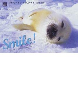 Smile! アザラシの赤ちゃん氷上の笑顔