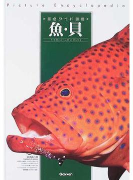 原色ワイド図鑑 Picture Encyclopedia 改訂新版 7 魚・貝