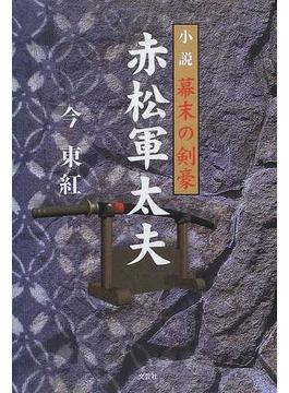 小説幕末の剣豪赤松軍太夫