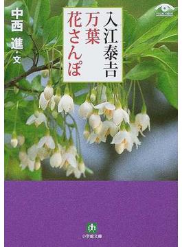 入江泰吉万葉花さんぽ(小学館文庫)