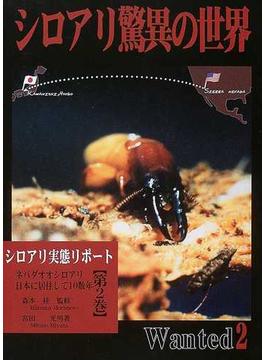 シロアリ驚異の世界 第2巻 ネバダオオシロアリ日本に居住して10数年