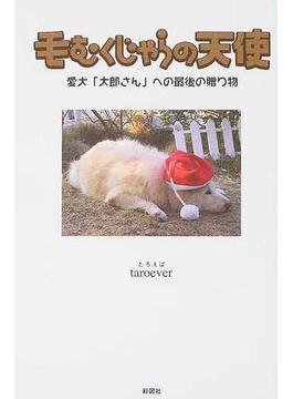 毛むくじゃらの天使 愛犬「太郎さん」への最後の贈り物