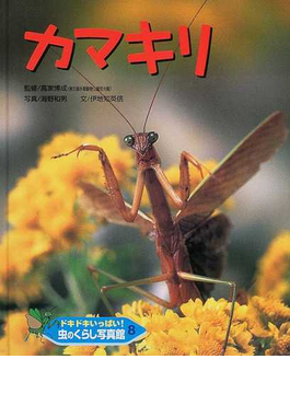 ドキドキいっぱい!虫のくらし写真館 8 カマキリ
