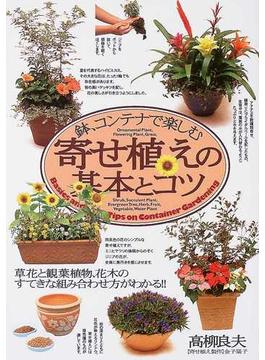 鉢、コンテナで楽しむ寄せ植えの基本とコツ