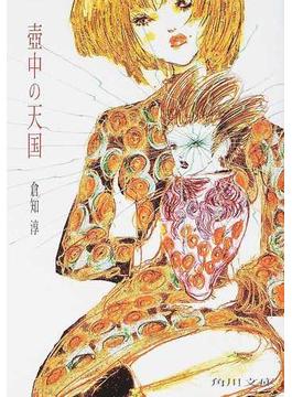 壺中の天国(角川文庫)