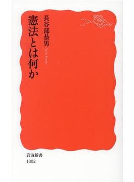 憲法とは何か(岩波新書 新赤版)