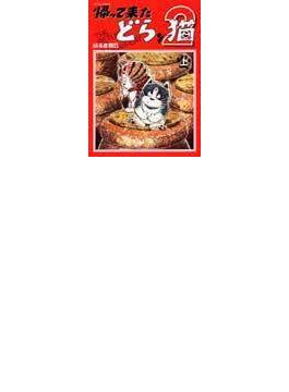 帰って来たどらン猫 2上 (アクションコミックス)
