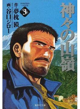 神々の山嶺 3(集英社文庫コミック版)