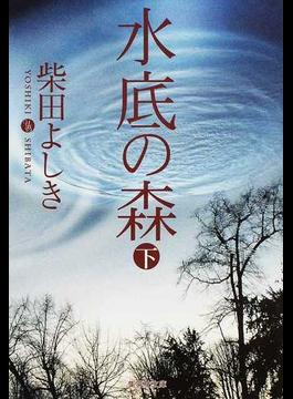 水底の森 下(集英社文庫)