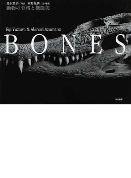 BONES 動物の骨格と機能美