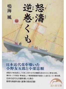 怒濤逆巻くも 日本近代化を導いた小野友五郎と小栗忠順(新人物文庫)