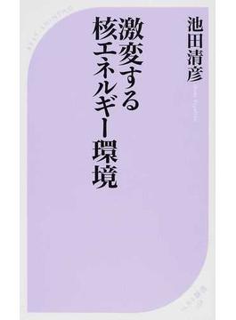 激変する核エネルギー環境(ベスト新書)