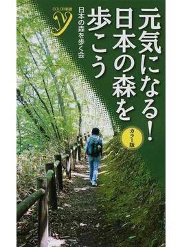 元気になる!日本の森を歩こう カラー版