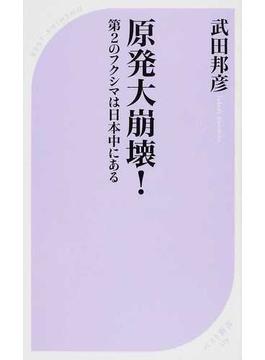 原発大崩壊! 第2のフクシマは日本中にある(ベスト新書)