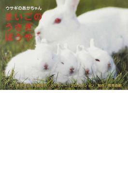 まいごのうさぎぼうや ウサギのあかちゃん