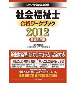 社会福祉士合格ワークブック ミネルヴァ国家試験対策 2012共通科目編