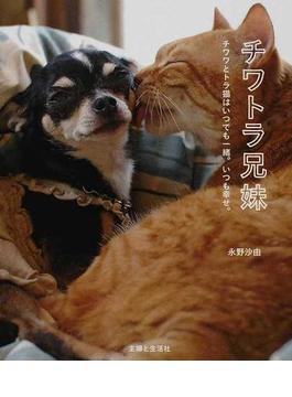 チワトラ兄妹 チワワとトラ猫はいつでも一緒。いつも幸せ。