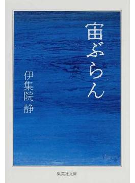 宙ぶらん(集英社文庫)