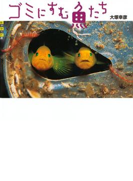 ゴミにすむ魚たち(世の中への扉)