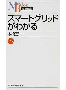 スマートグリッドがわかる(日経文庫)