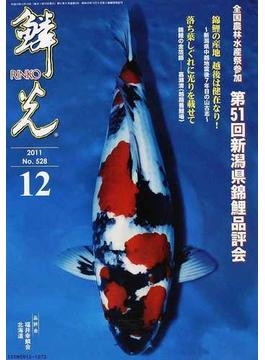 鱗光 2011−12 全国農林水産祭参加第51回新潟県錦鯉品評会
