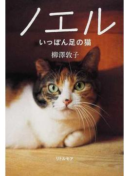 ノエル いっぽん足の猫