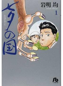 七夕の国 1(小学館文庫)