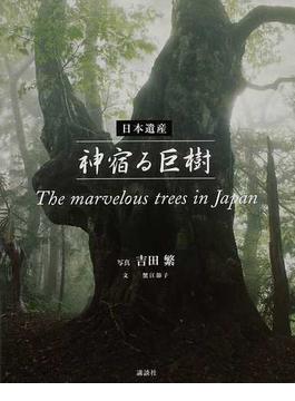 日本遺産神宿る巨樹