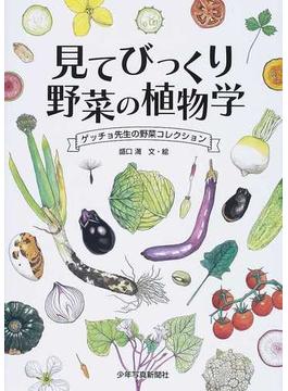 見てびっくり野菜の植物学 ゲッチョ先生の野菜コレクション