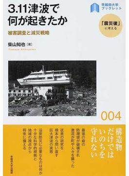 3.11津波で何が起きたか 被害調査と減災戦略
