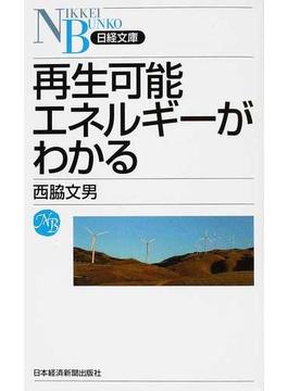 再生可能エネルギーがわかる(日経文庫)