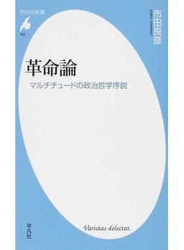 革命論 マルチチュードの政治哲学序説(平凡社新書)
