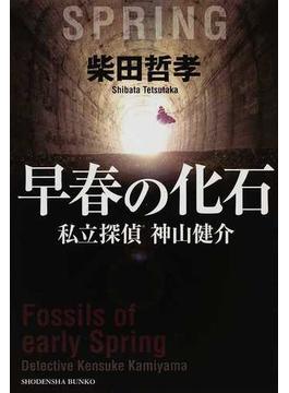 早春の化石(祥伝社文庫)