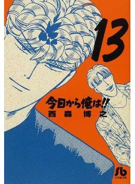 今日から俺は!! 13(小学館文庫)
