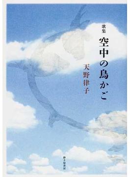 空中の鳥かご 天野律子歌集