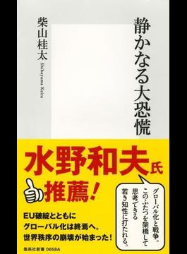 静かなる大恐慌(集英社新書)