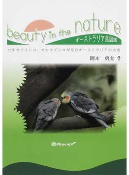 beauty in the nature セキセイインコ、オカメインコが住むオーストラリアの大地 オーストラリア鳥図鑑