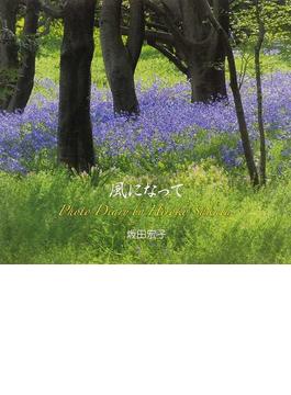 風になって Photo Diary by Hiroko Sakata