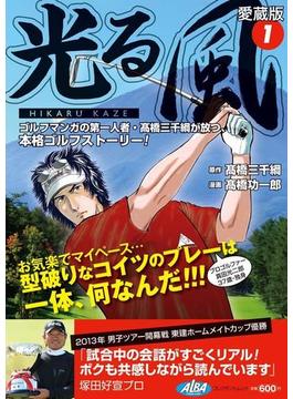 光る風(1)(アルバ プレミア漫画シリーズ)