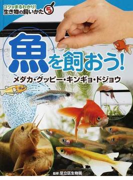 コツがまるわかり!生き物の飼いかた 5 魚を飼おう!