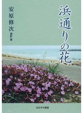 浜通りの花