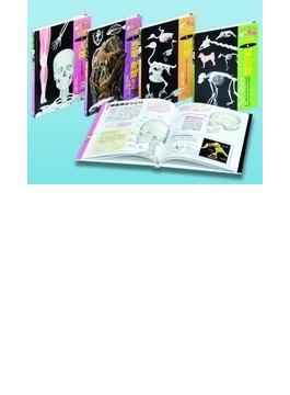 骨と筋肉大図鑑 4巻セット