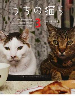 うちの猫ら 3