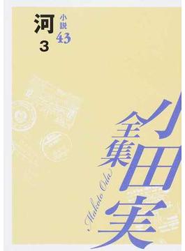 小田実全集 小説第43巻 河 3