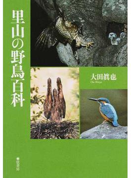 里山の野鳥百科