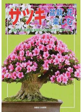 サツキ盆栽と花を楽しむ 盆栽入門に最適な日本固有の花を咲かせてみませんか