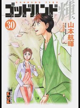 ゴッドハンド輝 30(講談社漫画文庫)