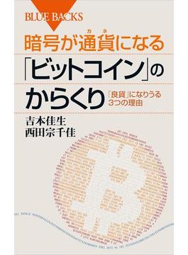 暗号が通貨になる「ビットコイン」のからくり(講談社ブルーバックス)