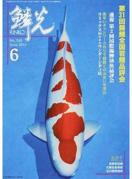 鱗光 2014−6 第31回錦鯉全国若鯉品評会