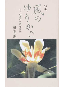 風のゆりかご 十二の月の八年句日記 句集